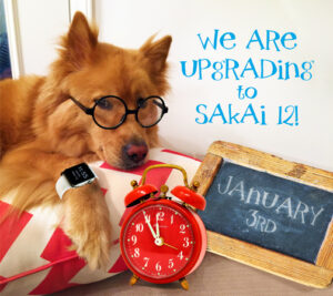 golden dog wearing glasses and watch announces we are upgrading to Sakai 12 January 3rd!