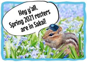 cute chipmunk wearing a carolina hat in a flower field says hey ya'll, spring 2021 rosters are in Sakai!