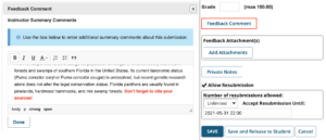 instructor feedback comment in bold red inline with student response in Sakai Assignments Grader