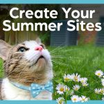 cat wearing carolina bow tie looks up at text create your summer sites