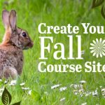 bunny in grassy field looks at text create your fall course sites