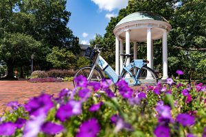 flowers and carolina bike in front of Old Well